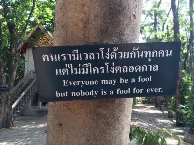 Sign on tree in Thai and English: Everyone May Be A Fool, But No One Is A Fool Forever