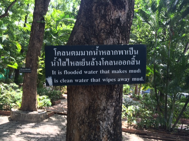 Sign on tree in Thai and English: It Is Flooded Water That Makes Mud; It Is Clean Water That Washes Away Mud